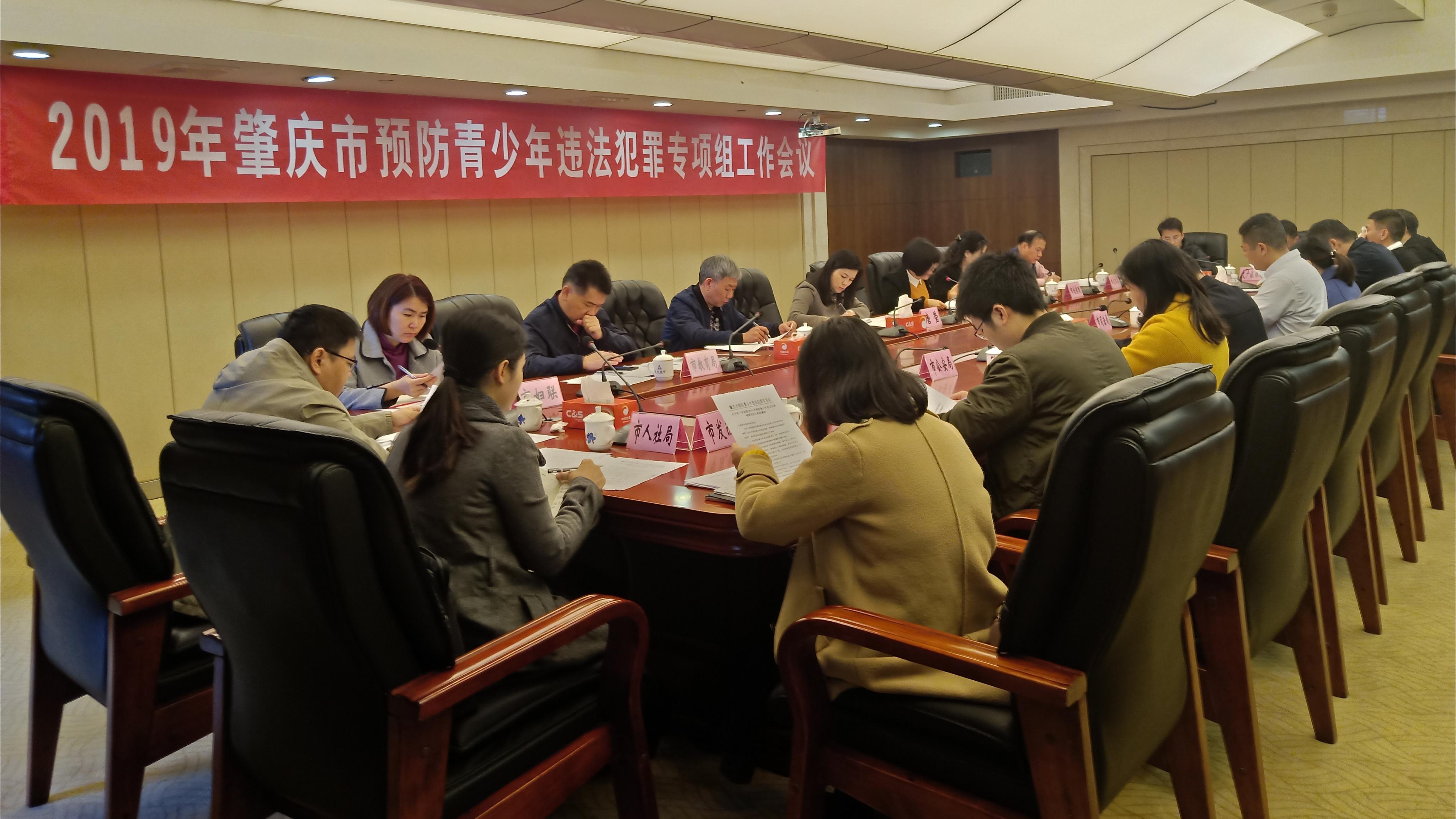 2019年肇庆市预防青少年违法犯罪专项组工作会议