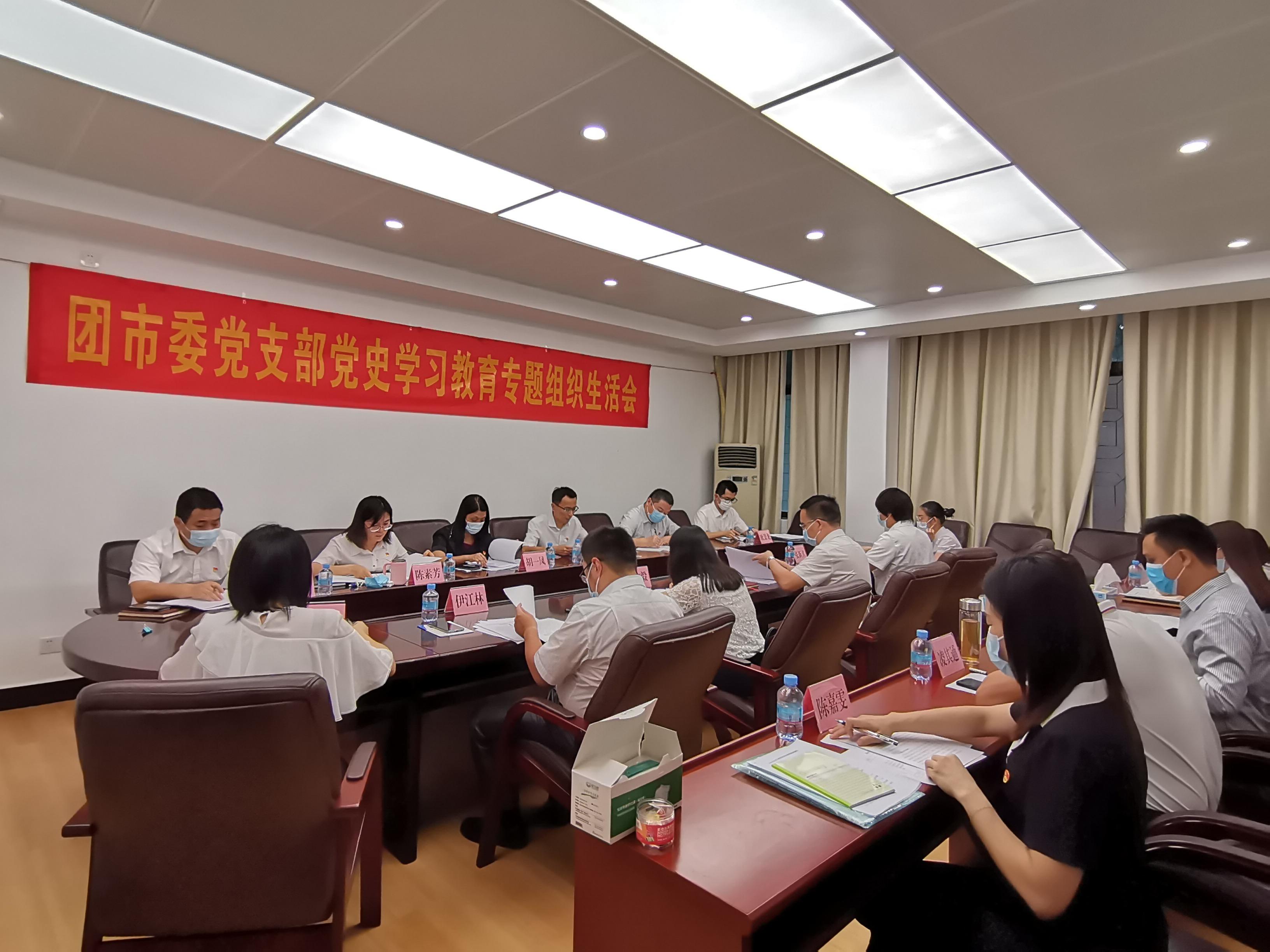 团市委党支部召开党史学习教育专题组织生活会